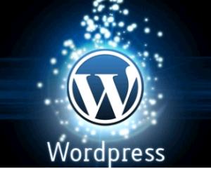 Conclusion sobre empresas de hospedaje especializado en wordpress